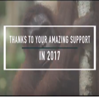 Because of You – 2017 Highlights
