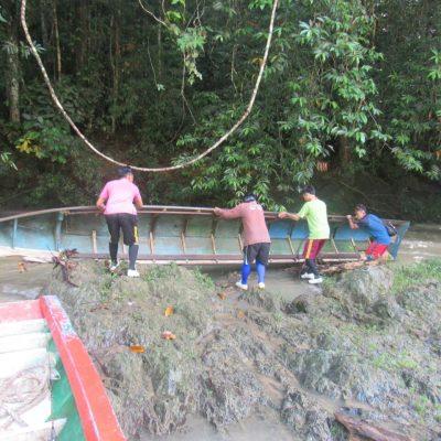Preparing a New Home for Orangutans – BOSF